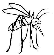 Putukatõrje losjoon essentsiõlidega
