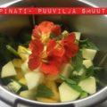 Detox spinati- puuvilja smuuti